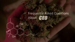 CBD Cannabinoids, Cannabidiol, CBD law, weed, weed law