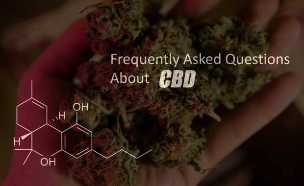 CBD and Schedule I; Dave Rodman, a colorado cannabis lawyer, explains
