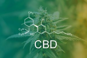 CBD and Drug Policy